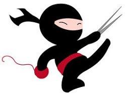 ninja1 copy