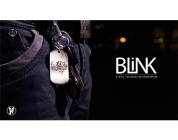 Review: BLINK by Skymember