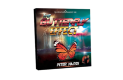 Review: The Butterfly Effect by Peter Nardi