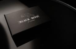 Review: Blackbird by Jeff Copeland