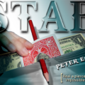 Review: STAB by Peter Eggink